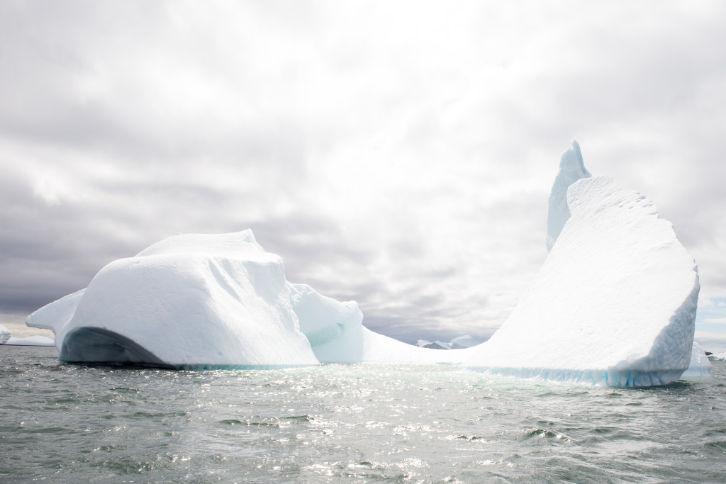 The icebergs in Antarctica are stunning.